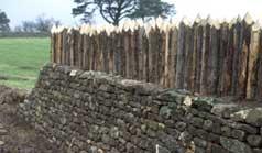 palasade fence