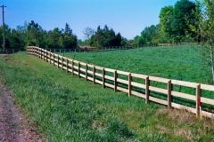 pasture-fencing2