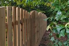 shadowbox-fencing11